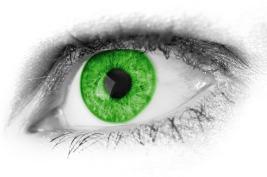 vision eye