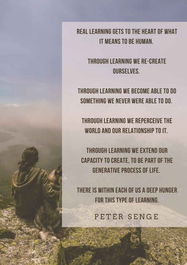 deep learning senge quote jpeg